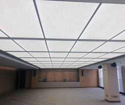Bespoke Ceiling LED Light Panel